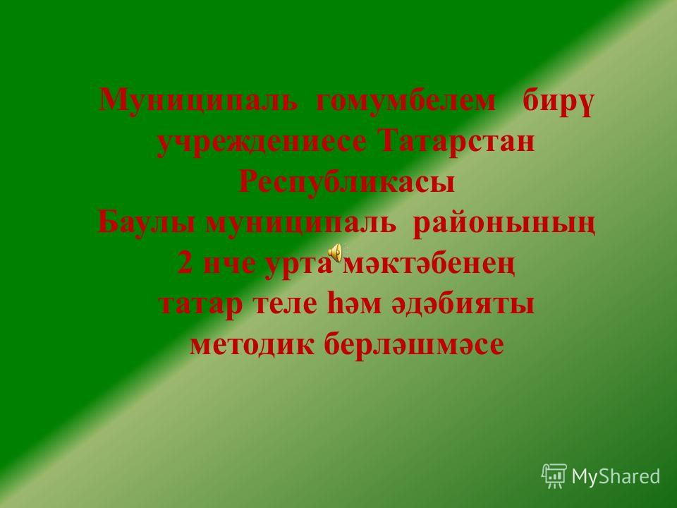 Муниципаль гомумбелем бирү учреждениесе Татарстан Республикасы Баулы муниципаль районының 2 нче урта мәктәбенең татар теле һәм әдәбияты методик берләшмәсе