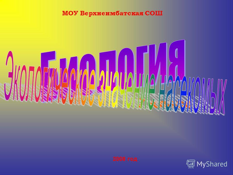 МОУ Верхнеимбатская СОШ 7 класс 2008 год