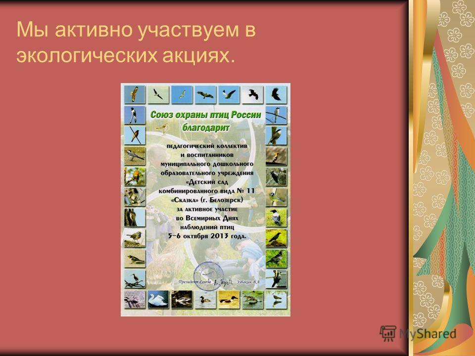 Мы активно участвуем в экологических акциях.