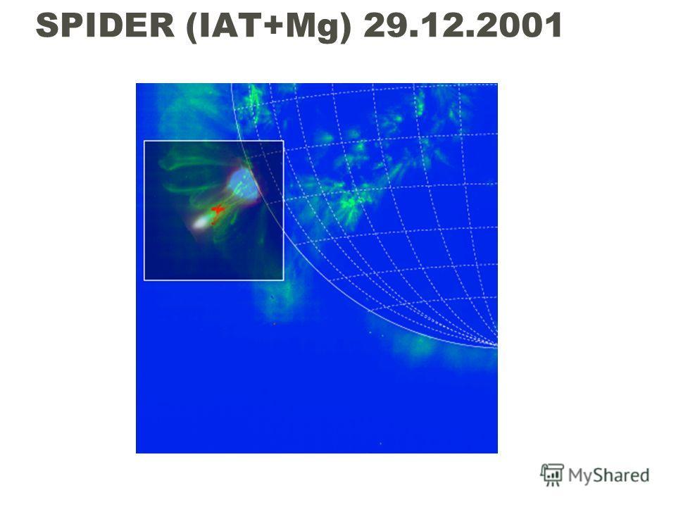 SPIDER (IAT+Mg) 29.12.2001