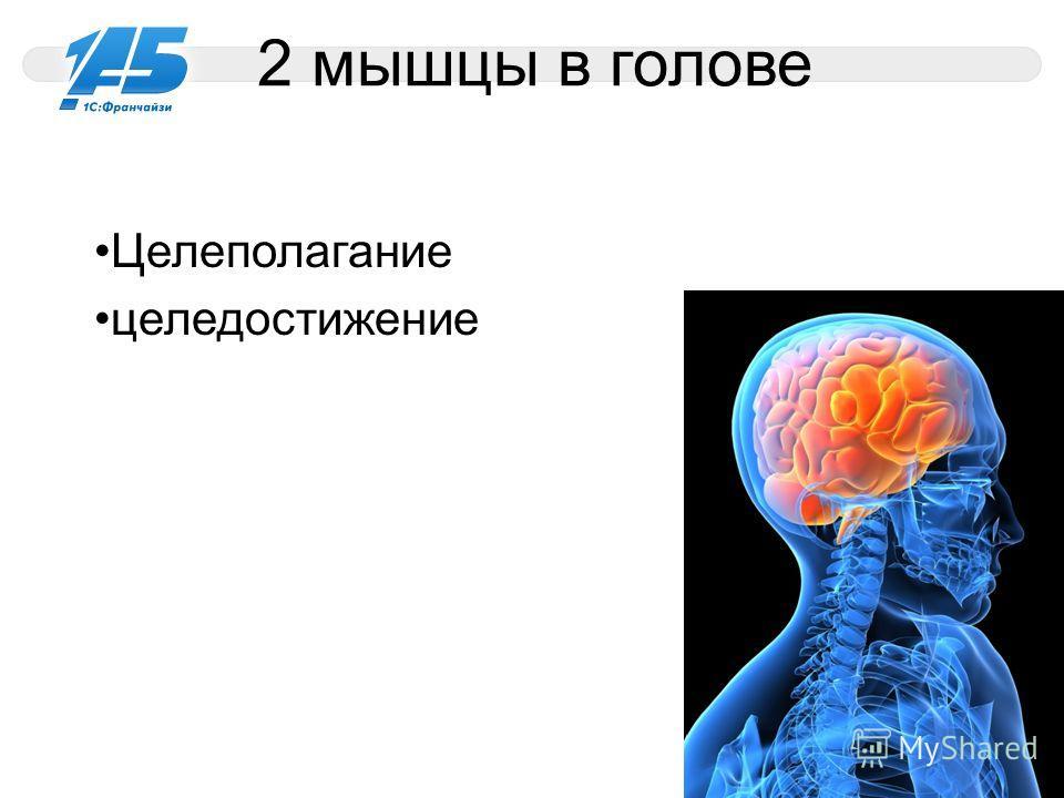 2 мышцы в голове Целеполагание целедостижение 11