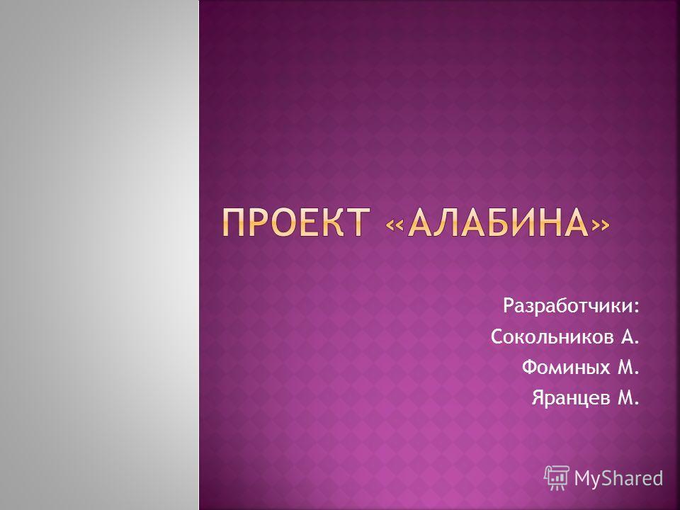 Разработчики: Сокольников А. Фоминых М. Яранцев М.