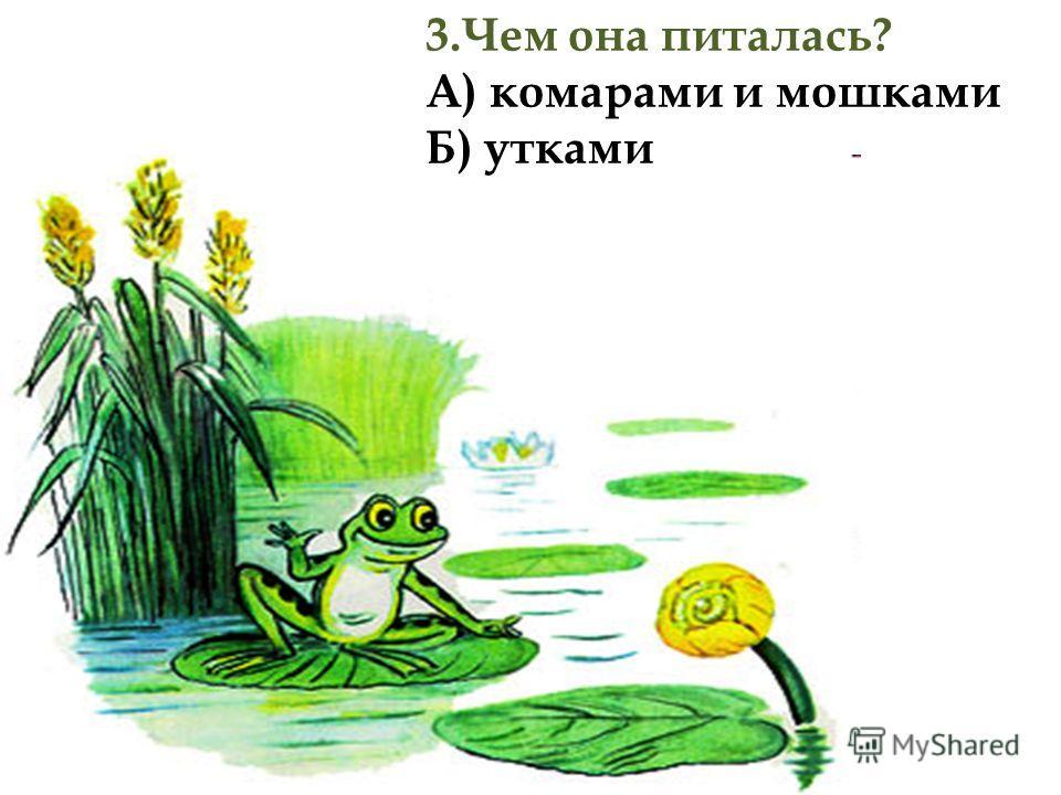 3.Чем она питалась? А) комарами и мошками Б) утками