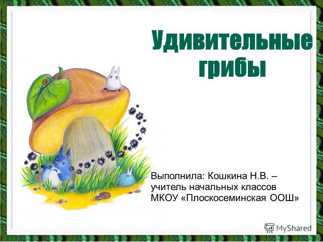 Удивительные грибы Выполнила: Кошкина Н.В. – учитель начальных классов МКОУ «Плоскосеминская ООШ»