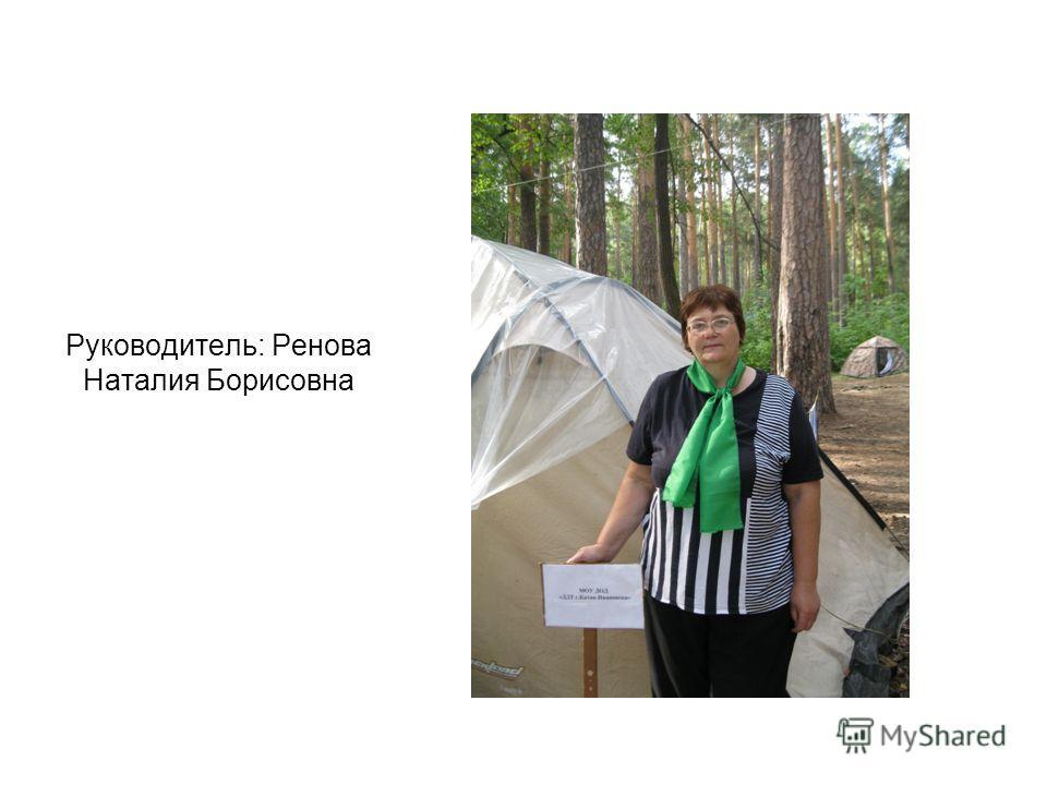 Руководитель: Ренова Наталия Борисовна