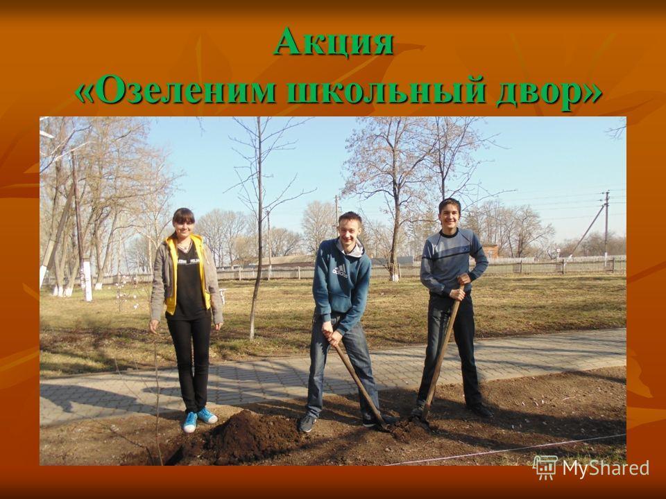 Акция «Озеленим школьный двор»