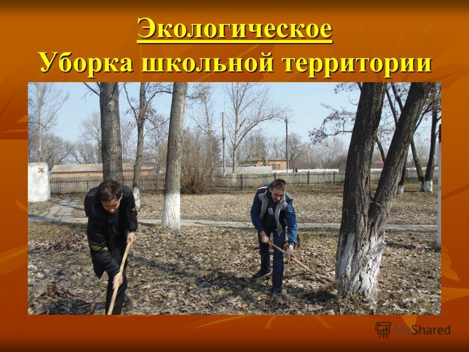 Экологическое Уборка школьной территории