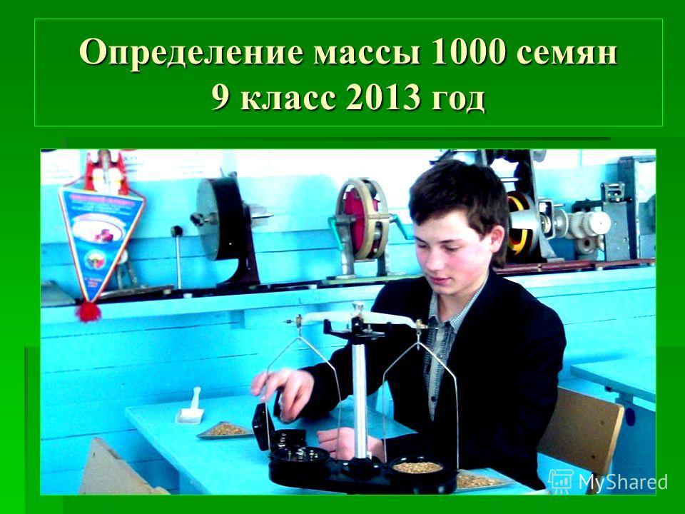 Определение массы 1000 семян 9 класс 2013 год