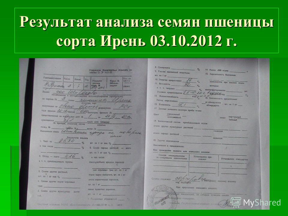 Результат анализа семян пшеницы сорта Ирень 03.10.2012 г.