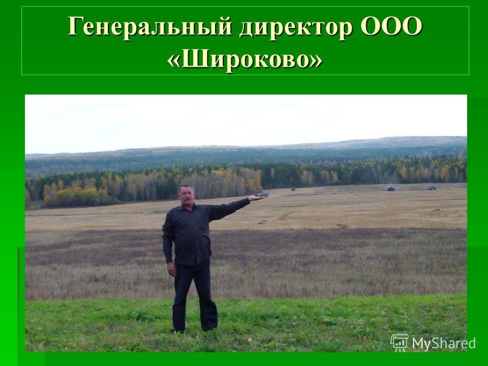 Генеральный директор ООО «Широково»