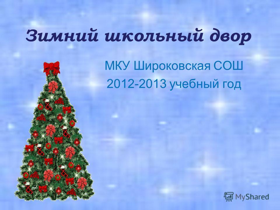 Зимний школьный двор МКУ Широковская СОШ 2012-2013 учебный год