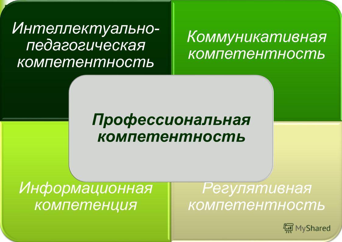 Интеллектуально- педагогическая компетентность Коммуникативная компетентность Информационная компетенция Регулятивная компетентность Профессиональная компетентность