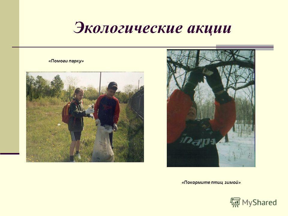 Экологические акции «Помоги парку» «Покормите птиц зимой»