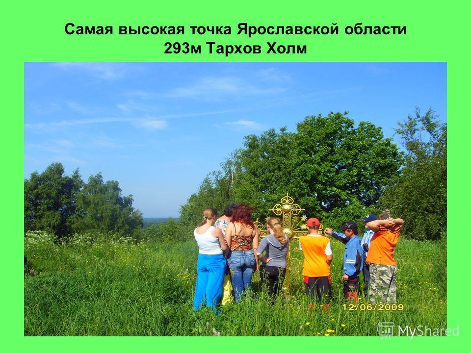 Самая высокая точка Ярославской области 293м Тархов Холм