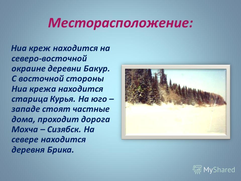 Месторасположение: Ниа креж находится на северо-восточной окраине деревни Бакур. С восточной стороны Ниа крежа находится старица Курья. На юго – западе стоят частные дома, проходит дорога Мохча – Сизябск. На севере находится деревня Брика.