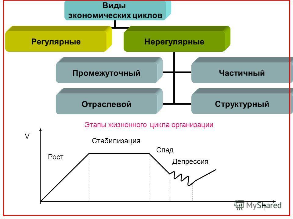 Виды экономических циклов РегулярныеНерегулярные ПромежуточныйЧастичный ОтраслевойСтруктурный Этапы жизненного цикла организации V T Рост Стабилизация Спад Депрессия