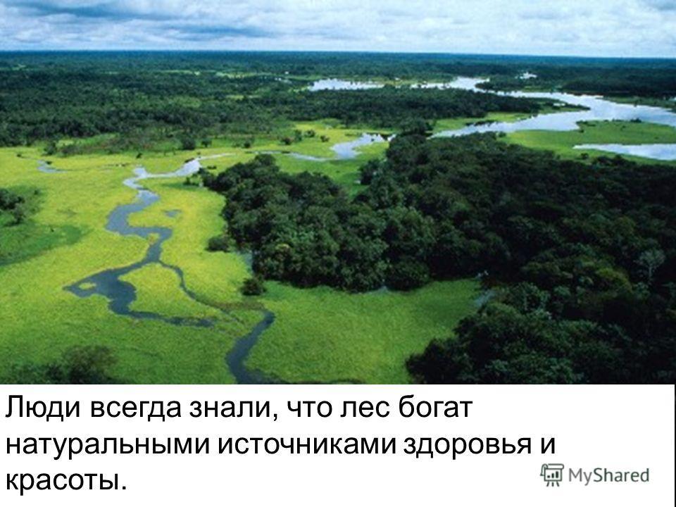 Люди всегда знали, что лес богат натуральными источниками здоровья и красоты.