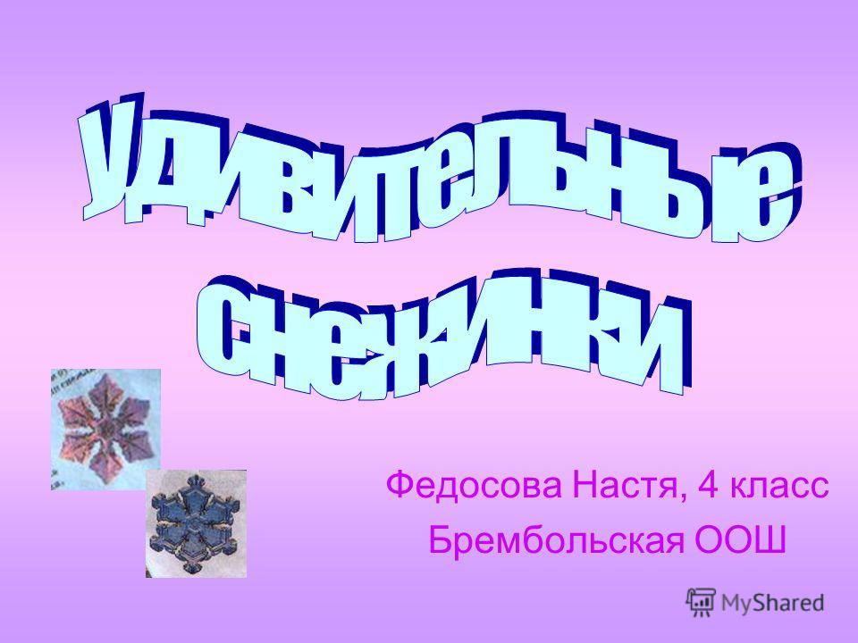 Федосова Настя, 4 класс Брембольская ООШ