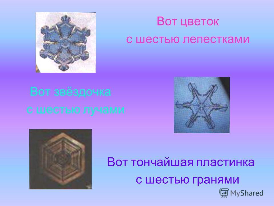 Вот цветок с шестью лепестками Вот звёздочка с шестью лучами Вот тончайшая пластинка с шестью гранями