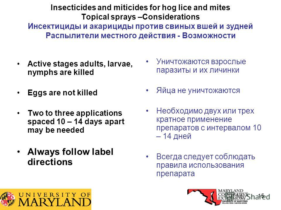 15 Insecticides and miticides for hog lice and mites Topical sprays –Considerations Инсектициды и акарициды против свиных вшей и зудней Распылители местного действия - Возможности Active stages adults, larvae, nymphs are killed Eggs are not killed Tw