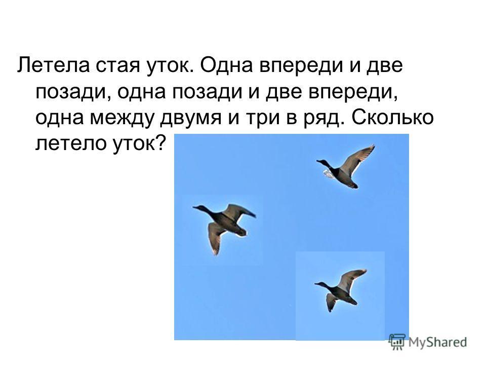 Летела стая уток. Одна впереди и две позади, одна позади и две впереди, одна между двумя и три в ряд. Сколько летело уток?