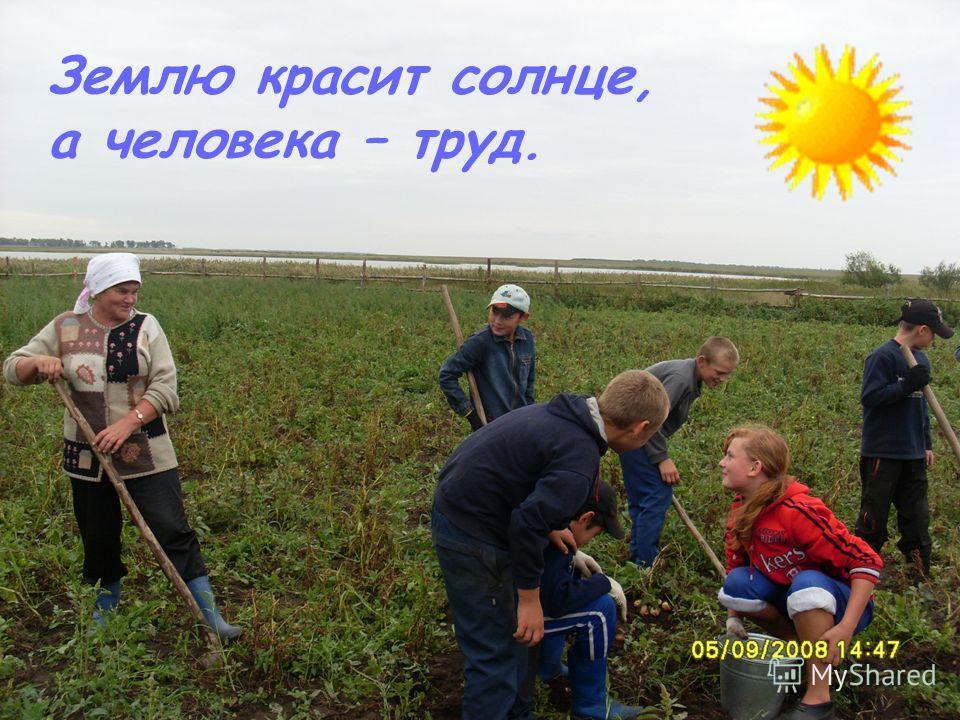 Землю красит солнце, а человека – труд.