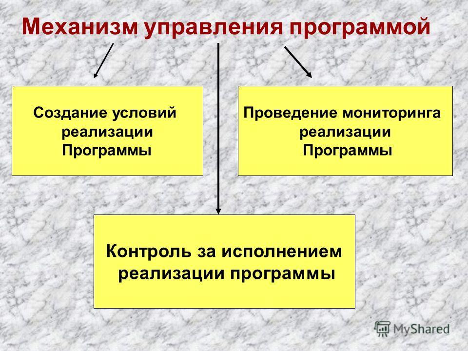 Механизм управления программой Создание условий реализации Программы Проведение мониторинга реализации Программы Контроль за исполнением реализации программы