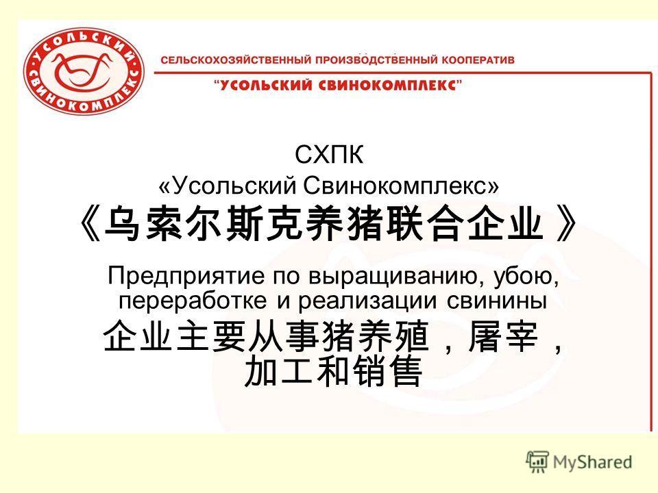 СХПК «Усольский Свинокомплекс» Предприятие по выращиванию, убою, переработке и реализации свинины