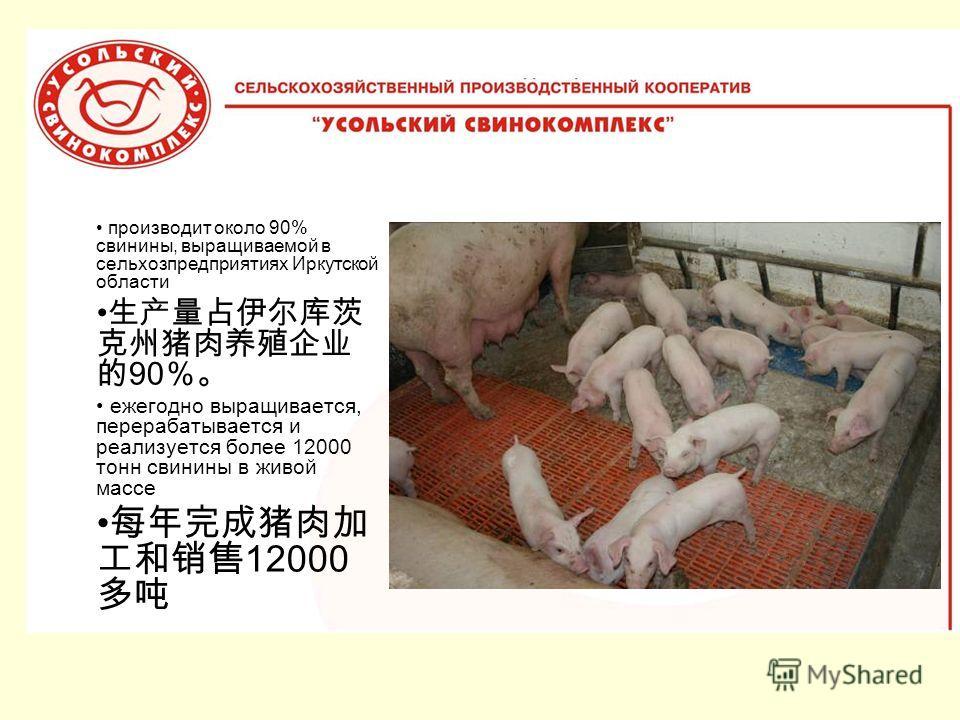 производит около 90% свинины, выращиваемой в сельхозпредприятиях Иркутской области 90 ежегодно выращивается, перерабатывается и реализуется более 12000 тонн свинины в живой массе 12000