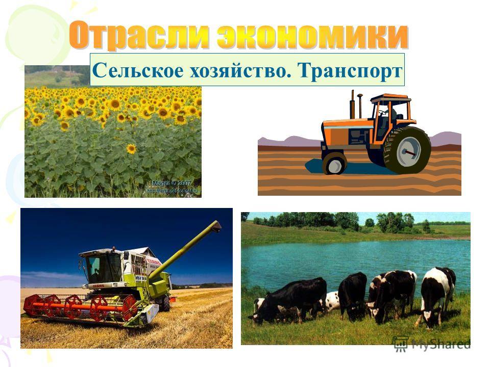 Сельское хозяйство. Транспорт