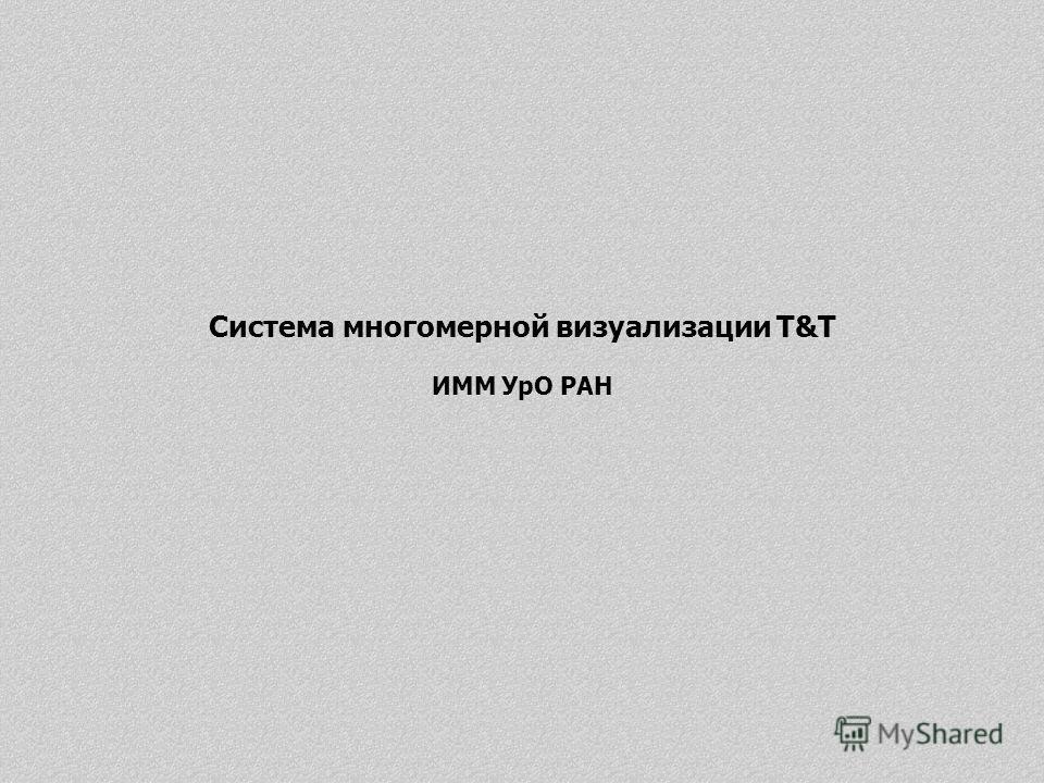 Система многомерной визуализации T&T ИММ УрО РАН
