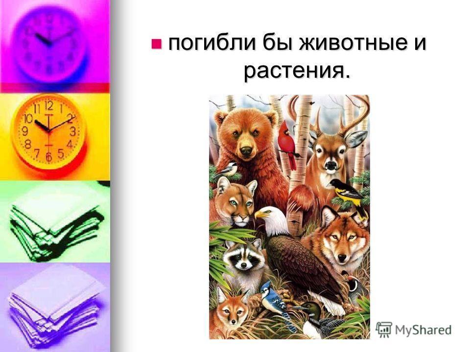 погибли бы животные и растения. погибли бы животные и растения.