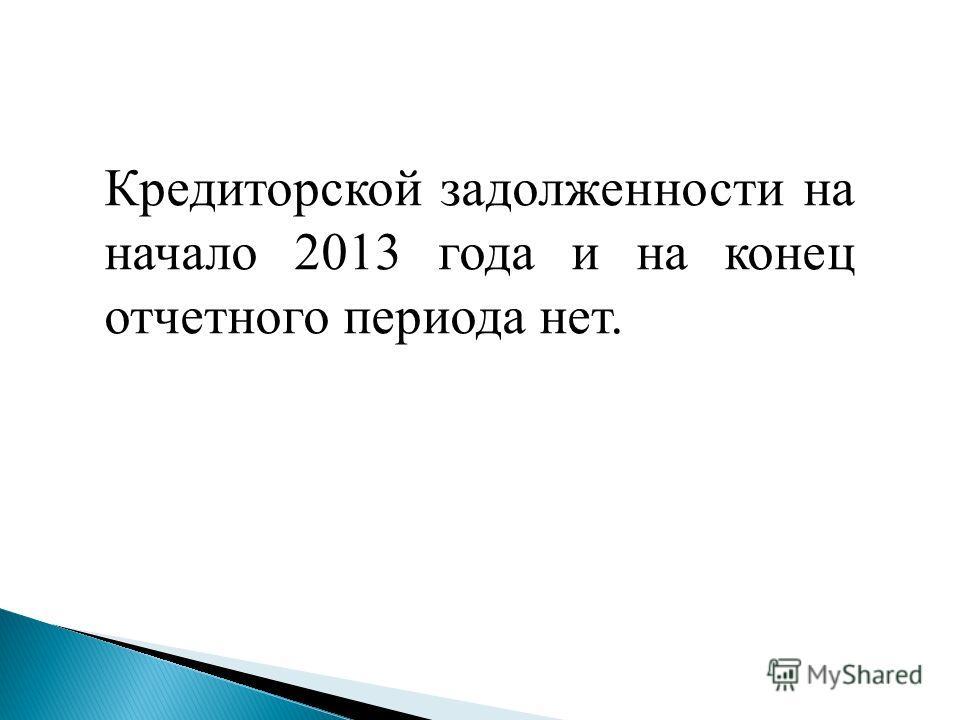 Кредиторской задолженности на начало 2013 года и на конец отчетного периода нет.
