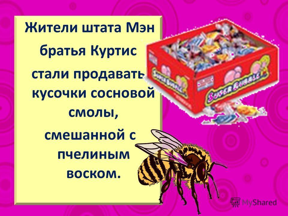Жители штата Мэн братья Куртис стали продавать кусочки сосновой смолы, смешанной с пчелиным воском.