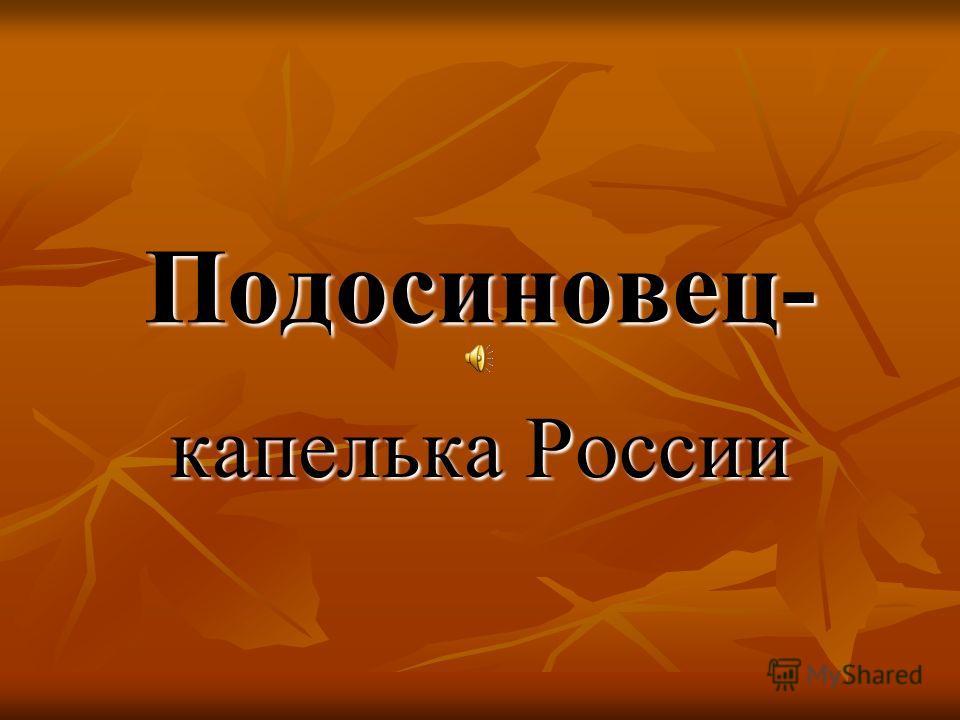 Подосиновец- капелька России