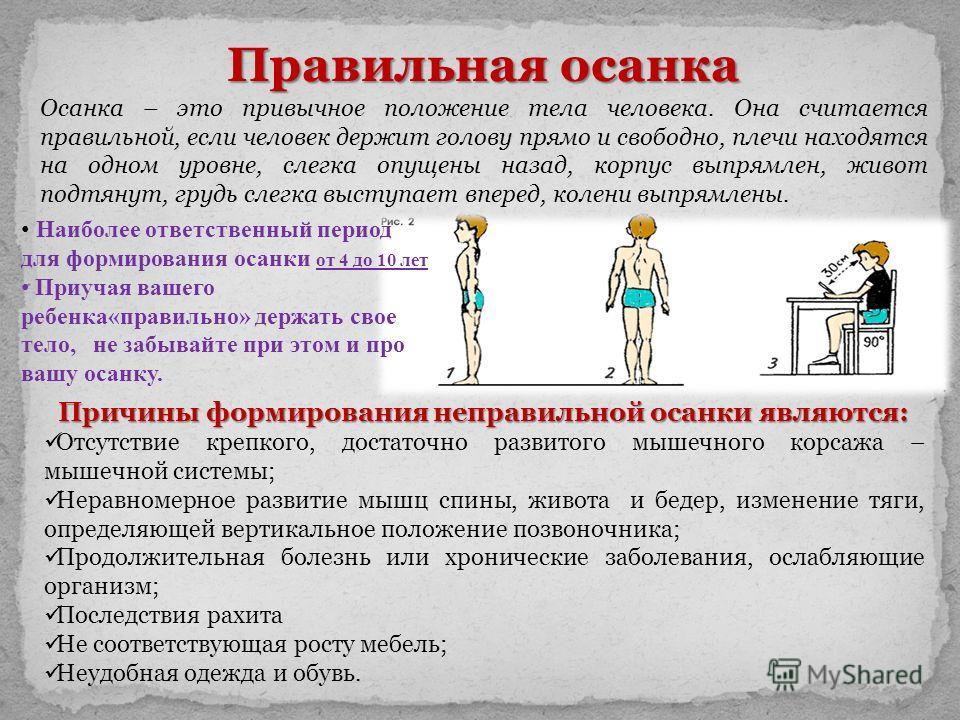 Правильная осанка Осанка – это привычное положение тела человека. Она считается правильной, если человек держит голову прямо и свободно, плечи находятся на одном уровне, слегка опущены назад, корпус выпрямлен, живот подтянут, грудь слегка выступает в