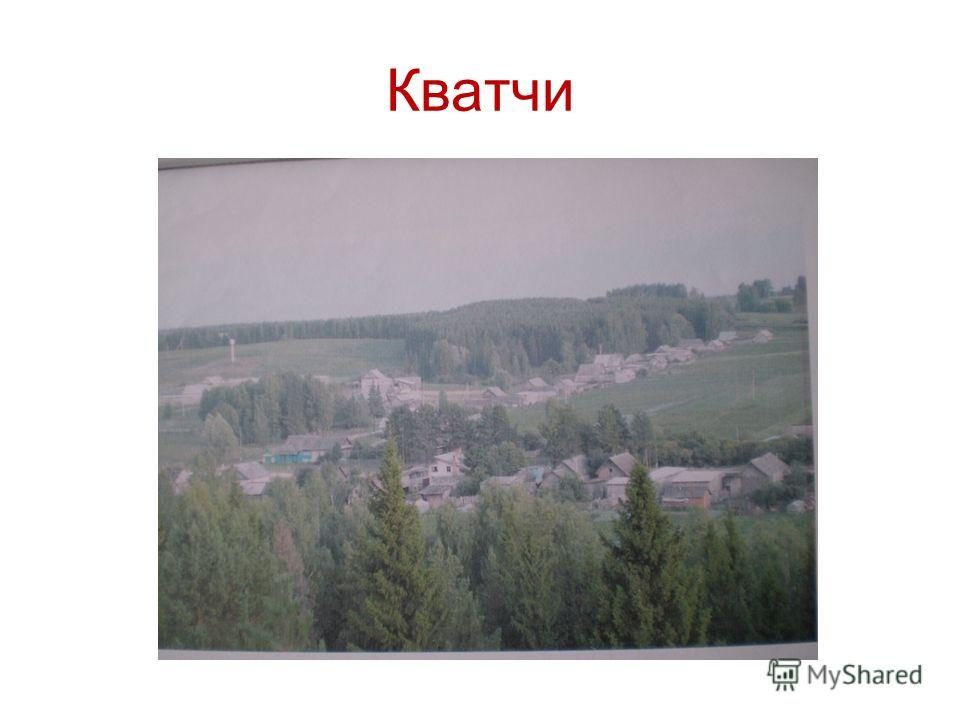 Кватчи