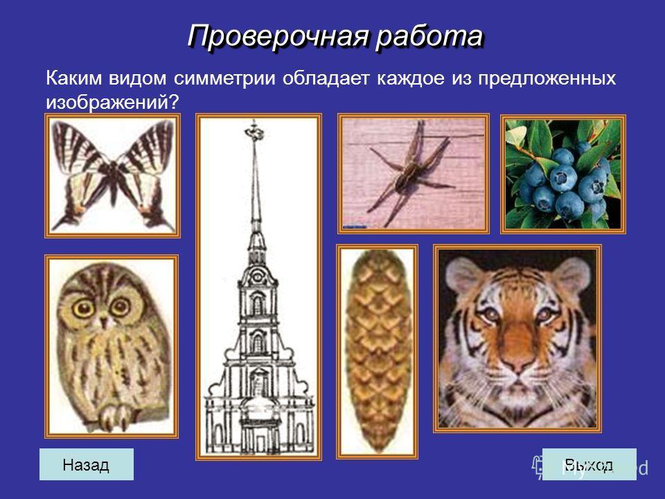 Назад Каким видом симметрии обладает каждое из предложенных изображений? Проверочная работа Выход