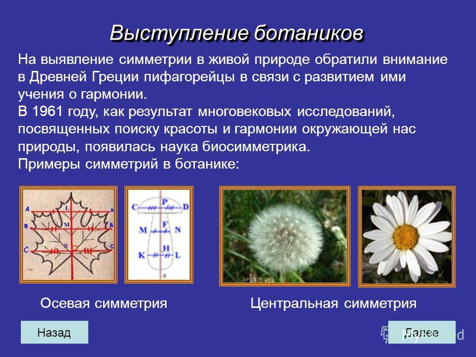 НазадДалее Выступление ботаников На выявление симметрии в живой природе обратили внимание в Древней Греции пифагорейцы в связи с развитием ими учения о гармонии. В 1961 году, как результат многовековых исследований, посвященных поиску красоты и гармо