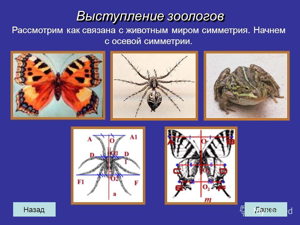 НазадДалее Выступление зоологов Рассмотрим как связана с животным миром симметрия. Начнем с осевой симметрии.