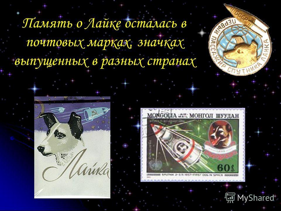 Память о Лайке осталась в почтовых марках, значках выпущенных в разных странах