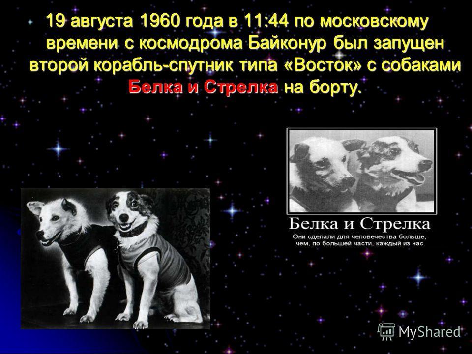 19 августа 1960 года в 11:44 по московскому времени с космодрома Байконур был запущен второй корабль-спутник типа «Восток» с собаками Белка и Стрелка на борту.