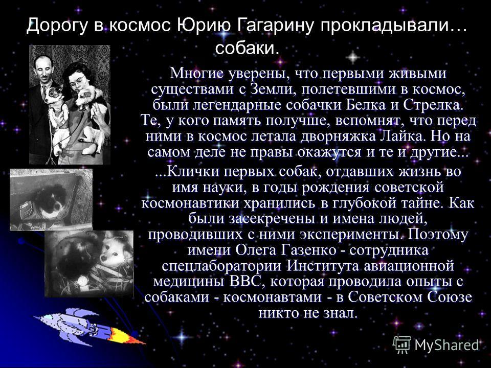 Многие уверены, что первыми живыми существами с Земли, полетевшими в космос, были легендарные собачки Белка и Стрелка. Те, у кого память получше, вспомнят, что перед ними в космос летала дворняжка Лайка. Но на самом деле не правы окажутся и те и друг