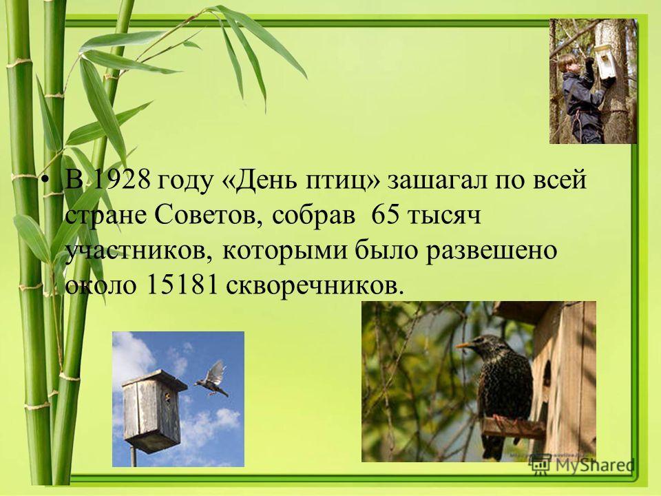 В 1928 году «День птиц» зашагал по всей стране Советов, собрав 65 тысяч участников, которыми было развешено около 15181 скворечников.