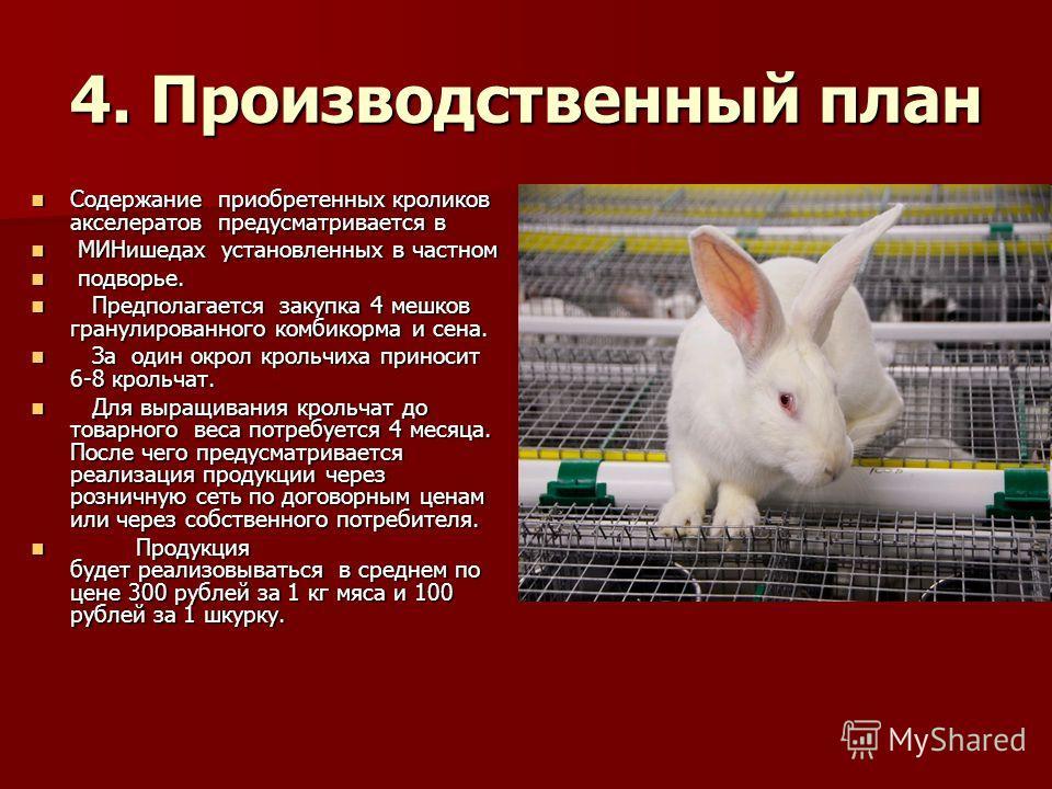 4. Производственный план Содержание приобретенных кроликов акселератов предусматривается в Содержание приобретенных кроликов акселератов предусматривается в МИНишедах установленных в частном МИНишедах установленных в частном подворье. подворье. Предп
