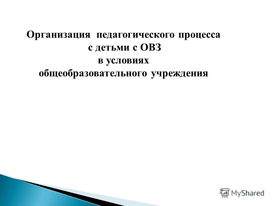 Организация педагогического процесса с детьми с ОВЗ в условиях общеобразовательного учреждения