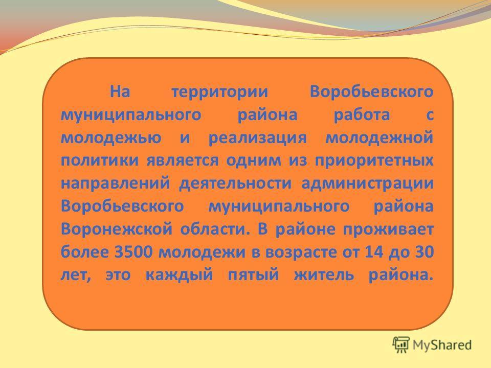 На территории Воробьевского муниципального района работа с молодежью и реализация молодежной политики является одним из приоритетных направлений деятельности администрации Воробьевского муниципального района Воронежской области. В районе проживает бо