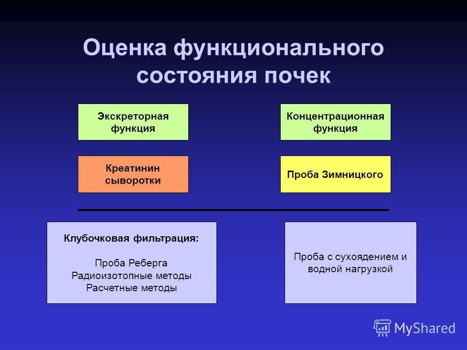 Оценка динамики клубочковой фильтрации в до-диализной фазе тХПН А.Ю. Денисов