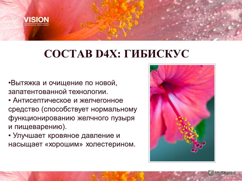 СОСТАВ D4X: ГИБИСКУС Вытяжка и очищение по новой, запатентованной технологии. Антисептическое и желчегонное средство (способствует нормальному функционированию желчного пузыря и пищеварению). Улучшает кровяное давление и насыщает «хорошим» холестерин