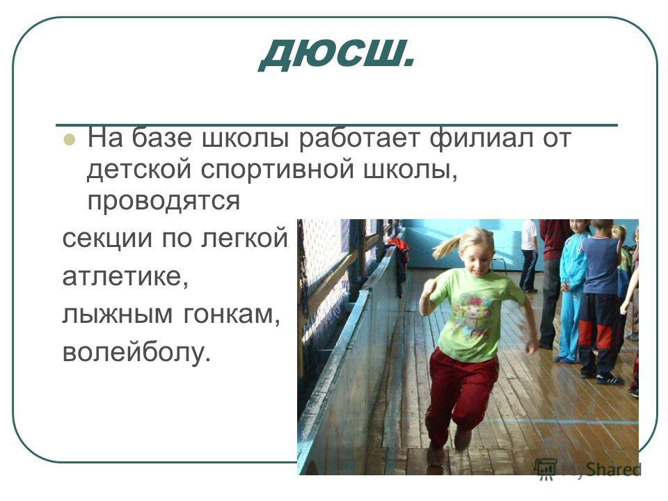 ДЮСШ. На базе школы работает филиал от детской спортивной школы, проводятся секции по легкой атлетике, лыжным гонкам, волейболу.